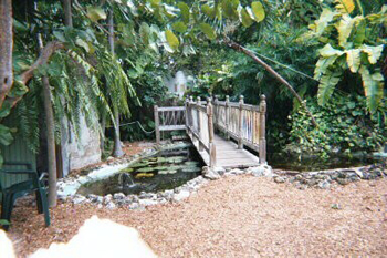 Bridge at Hemingway House, Key West, FL